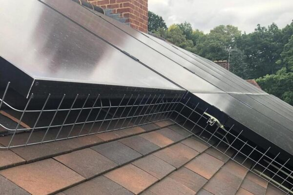 pigeon-proofing-solar-panels